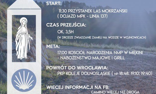 Camino po polsku