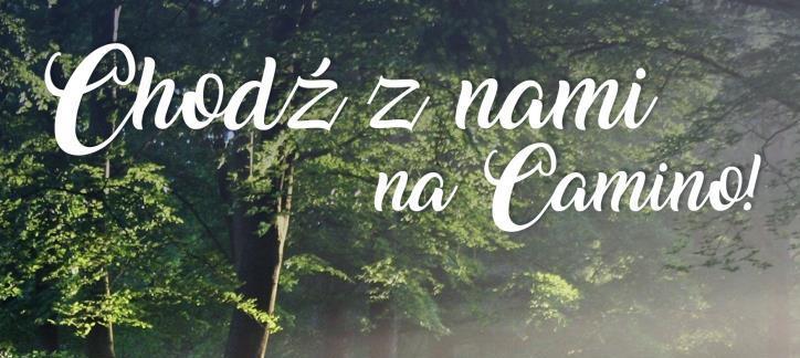 Camino z DDM